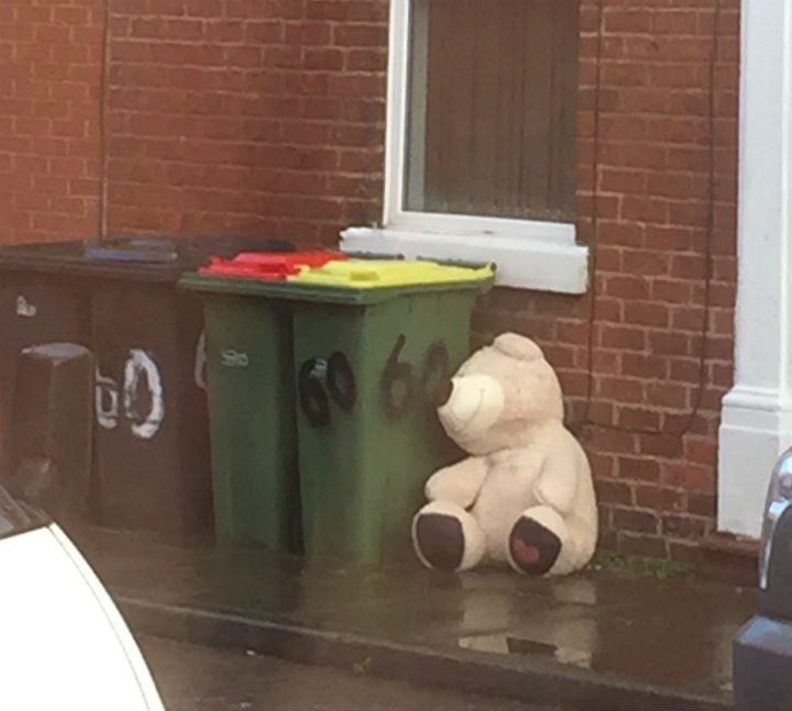The bear sits on the street in the Plungington area