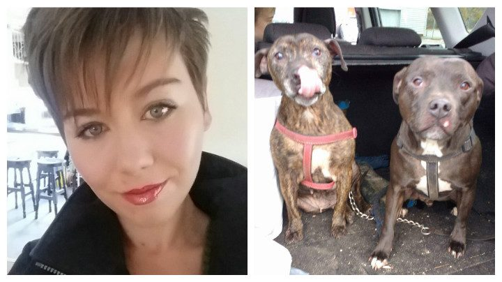 Jen Seed and the family's two dogs who were rescued after the incident