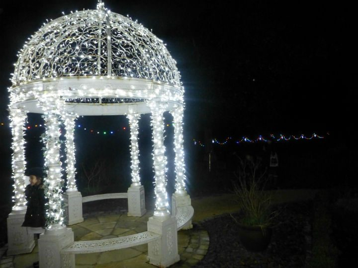 The lights at the hospice in Lostock Hall
