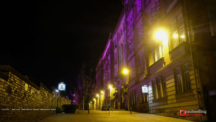 A purple glow on County Hall Pic: Paul Melling