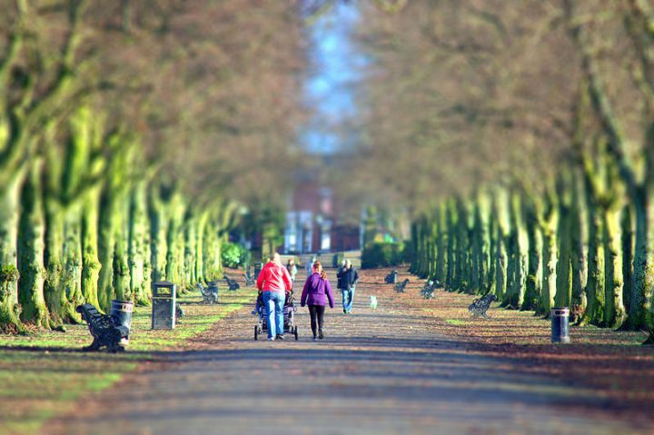 A stroll in Haslam Park Pic: Tony Worrall