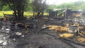 Aftermath of the fire which gutted the stables in Ribbleton Pic: Shannon Hehir