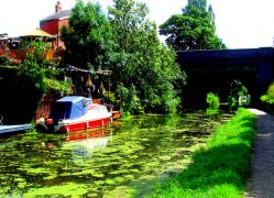 Along the Lancaster Canal at Preston Pic: Tony Worrall