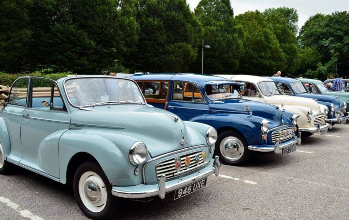 More of the classic cars lined up Pic: Gary Poole
