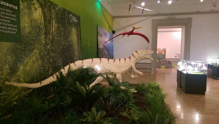 Lego dinosaurs in the gallery at the Harris