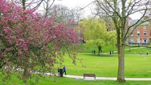 Winckley Square gardens is to host the live show Pic: Jim Beattie