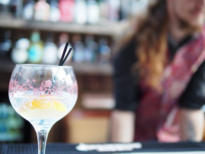 Entry to the festival includes a gin goblet