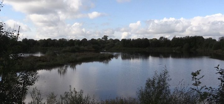 A view of the current wetlands in Grimsargh