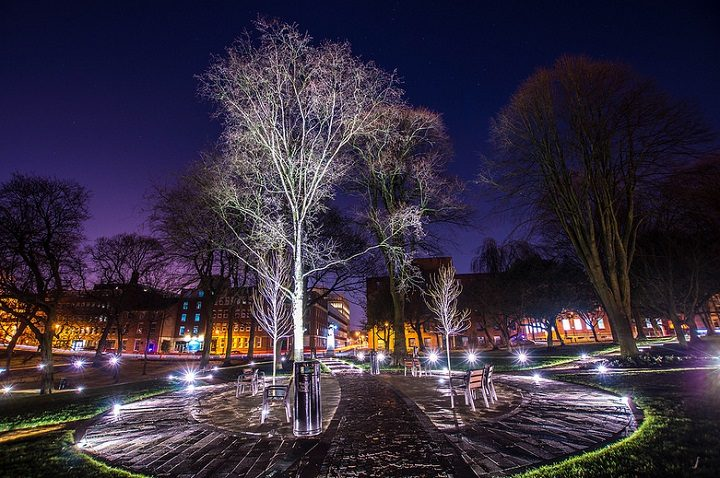Winckley Square will see a Christmas tree for the festive period