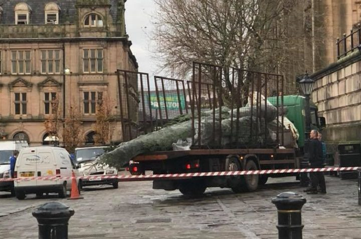 Christmas tree making its way into the Flag Market Pic: Jonny Esfahan