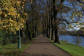 Avenham Park Pic: Tony Worrall