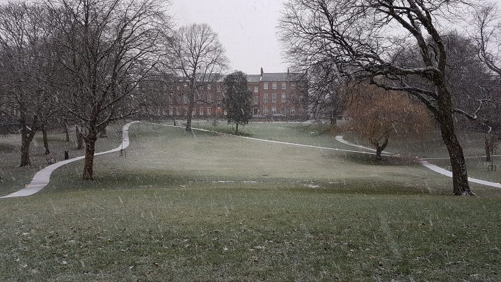 Snow falling in Winckley Square around 8.30am on Saturday Pic: Robin Carter