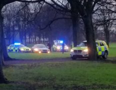 Police vehicles on the park surrounded the car