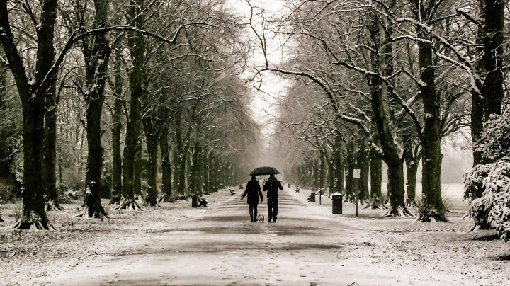 A snow lined walk in Haslam Park Pic: Heather Amanda List