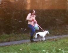 Police have released this picture of a woman they would like to speak to, and a dog they would like to trace Pic: South Ribble Police