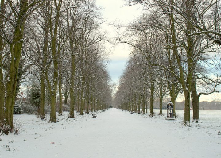 A snow scene in Haslam Park during the snowfall on Tuesday (27 February) Pic: Tony Worrall