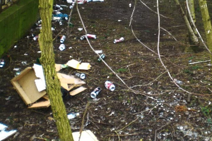 Some of the litter found near to Rosebud Park off London Road/New Hall Lane