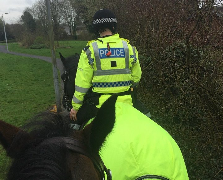 Police used mounted officers to search in Penwortham