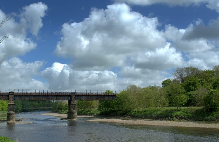 A sunny day on the River Ribble Pic: Tony Worrall