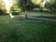 Winckley Square on Wednesday evening - with litter scattered