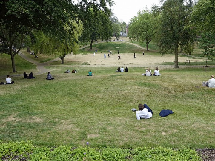 A cricket match in the recently restored Winckley Square Pic: 70023venus2009