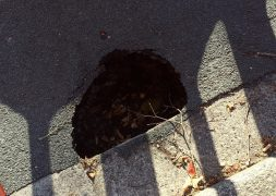 One of the Ingol sinkholes