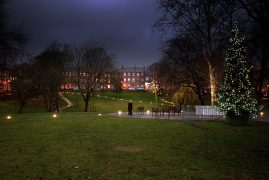 Christmas tree in Winckley Square Pic: Tony Worrall