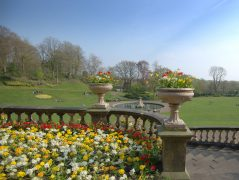 A sunny day in Miller Park with Spring colours Pic: Tony Worrall