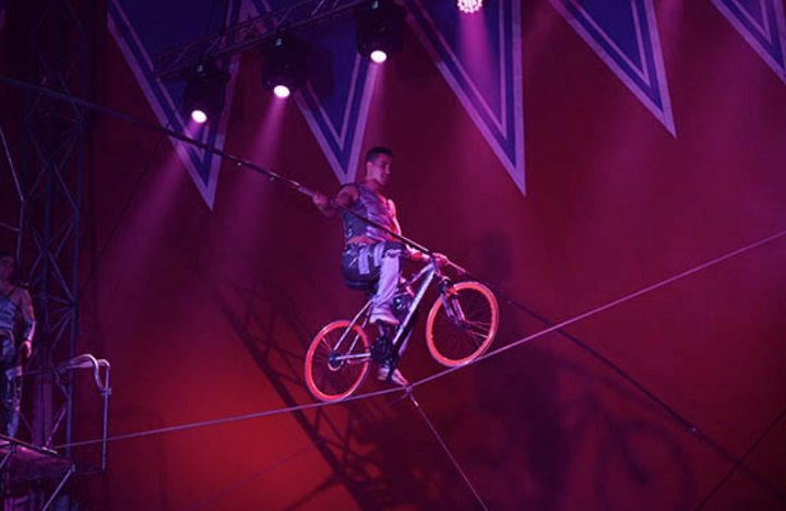 Taking on the high wire at the Circus Berlin
