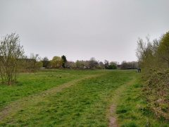 The land off Wychnor is due for development. It's currently a popular spot with dog walkers. Pic: Blog Preston