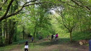 The woodland at Diggy Sticks being explored