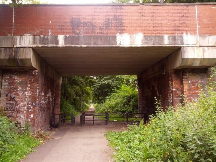 The dog attack took place on the path on the old railway line Pic: MichaelGT