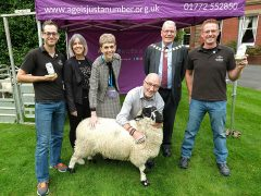 A Lonk sheep steals the show at the What The Flock launch