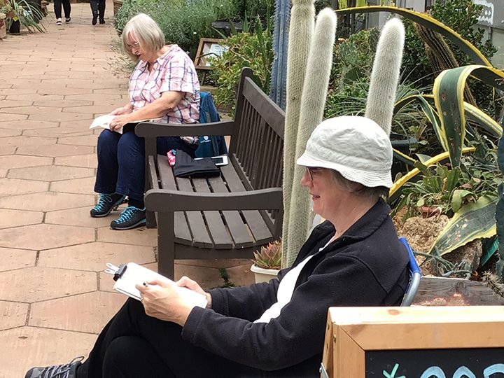 Sketching day at Myerscough College Plant World