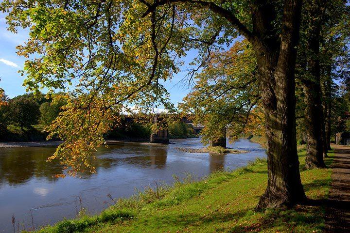 Avenham Park in autumn Pic: Tony Worrall