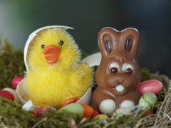 Easter chick and chocolate bunny Pic: Susanne Jutzeler, suju-foto from Pixabay