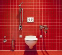 An accessible toilet Pic: Chris Keller from Pixabay