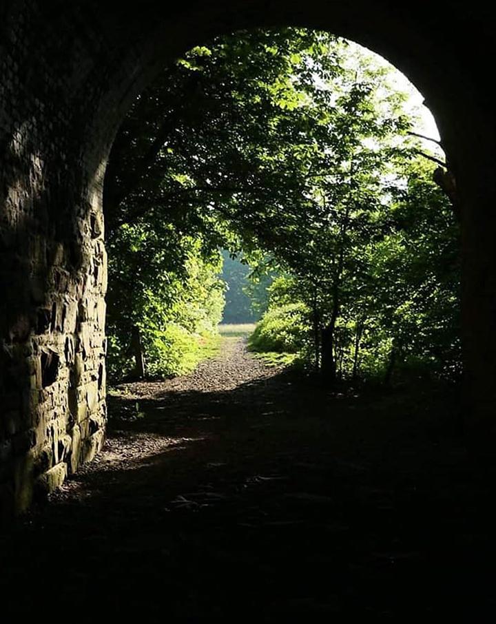 Path under Penwortham bridge Pic @angle_angelmichael