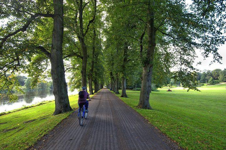A cyclist in Avenham Park
