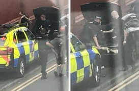Police seized the riles the boot of the car