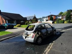 The Nissan Micra was set alight near Hurst Park
