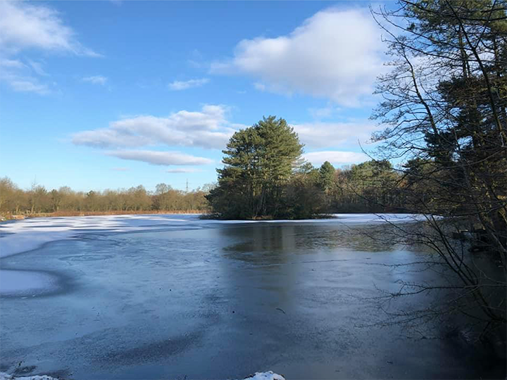 Cuerden Valley Park during winter Pic: Steph Reece
