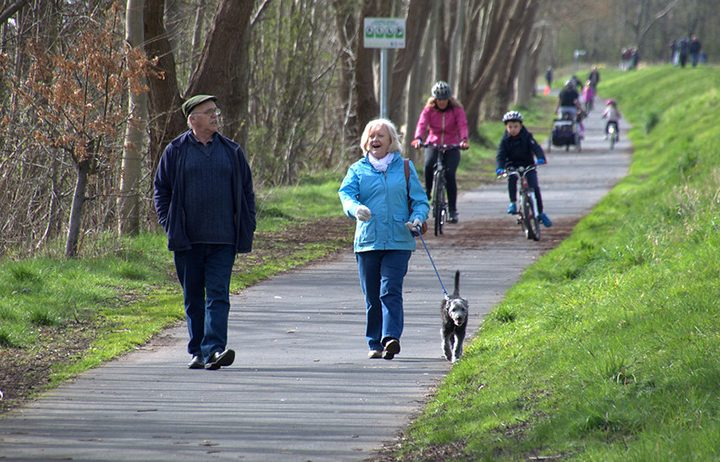 Dog walkers and cyclists on the Guild Wheel Pic: Tony Worrall