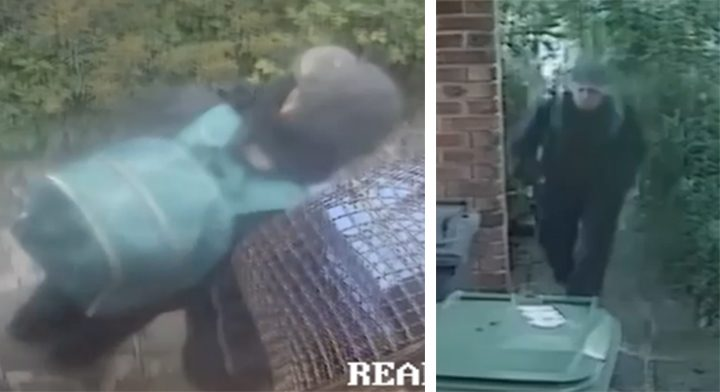 CCTV images of the alleged offender