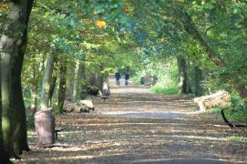 Looking down the Old Tram Road during Sunday 25 October. Preston and Lancashire residents can currently meet outdoors keeping to the rule of six. Pic: Tony Worrall