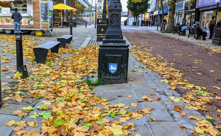 Autumn leaves on the streets of Preston Pic: Tony Worrall