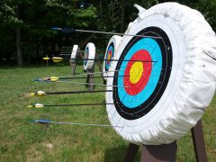 Archery target and arrows Pic: Giovanna Orlando from Pixabay