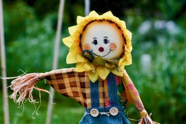 Scarecrow Pic: John Collins from Pixabay