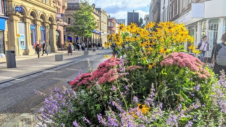 Colourful flowers in Preston City Centre Pic: Tony Worrall