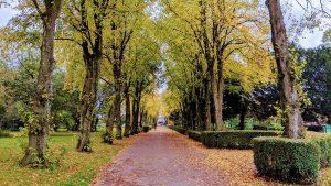 Haslam Park walkway Pic: Tony Worrall